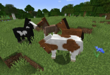 Photo of How DO I Breed Horses in Minecraft?